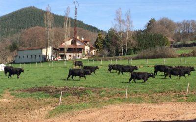 Ferme bio en ligne, la tradition au coeur des Vosges