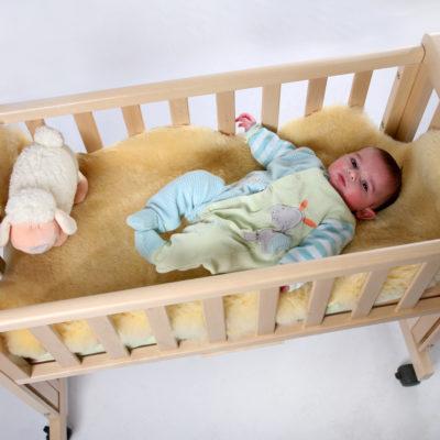 peaux d 39 agneau bio archives ferme d 39 albrecht. Black Bedroom Furniture Sets. Home Design Ideas